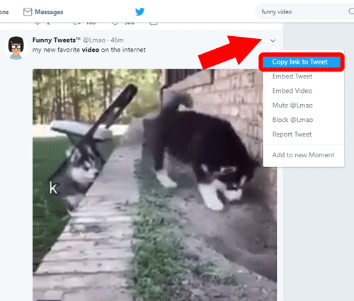 How to download a video from twitter 3 go to the website that i have already mentioned here and you are going to see a url bar on the home page of the website ccuart Images