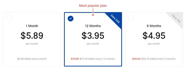 SurfShark VPN Extention Price Plan